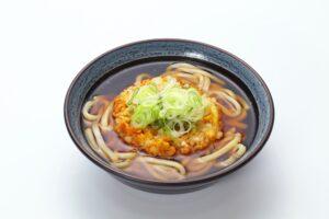 Udon with mixed tempura
