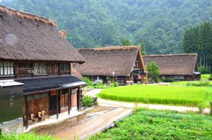 【World Heritage】Shirakawago and Suganuma Bus Tour