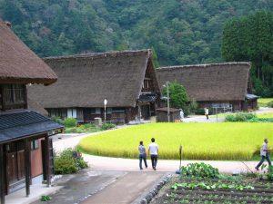 【World Heritage】Shirakawa-go and Suganuma Bus Tour