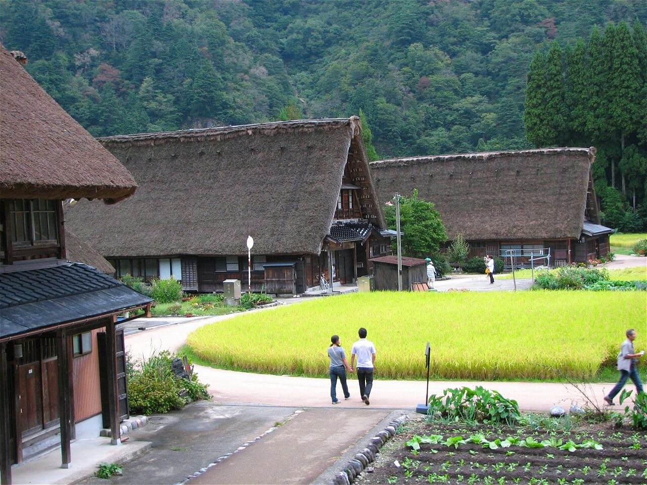 【World Heritage】Shirakawa-go and Suganuma Bus Tour