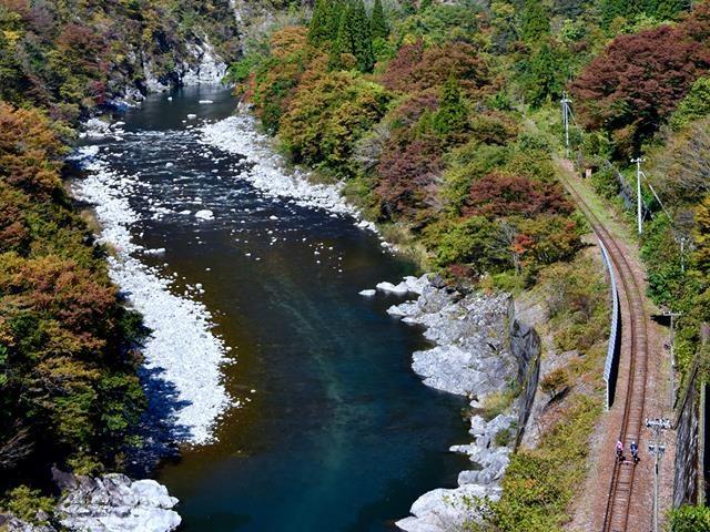 Rail Mountain Bike Gattan Go!! Canyon Course (Until August 31)