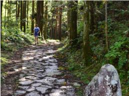Nakasendo SAMURAI Road Walk Takayama Round Trip Course