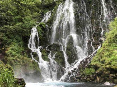 "Trekking at secluded regions at the foot of Mt.Norikura ""Goshikigahara-no-mori"""